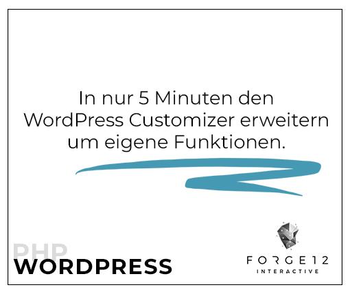 WordPress-Customizer-erweitern-PHP
