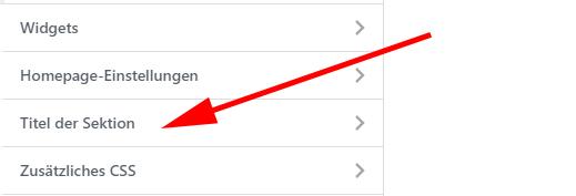 WordPress Customizer Sektion