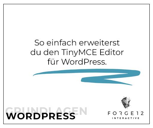 WordPress Webentwicklung TinyMCE Editor erweitern